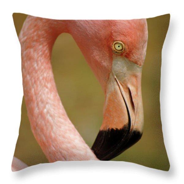Flamingo Head Throw Pillow by Carlos Caetano