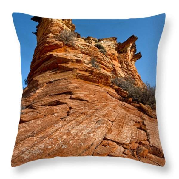 Flat Top Throw Pillow by Christopher Holmes