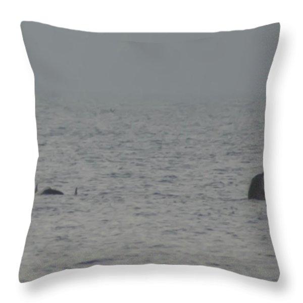 Flipper Throw Pillow by Bill Cannon