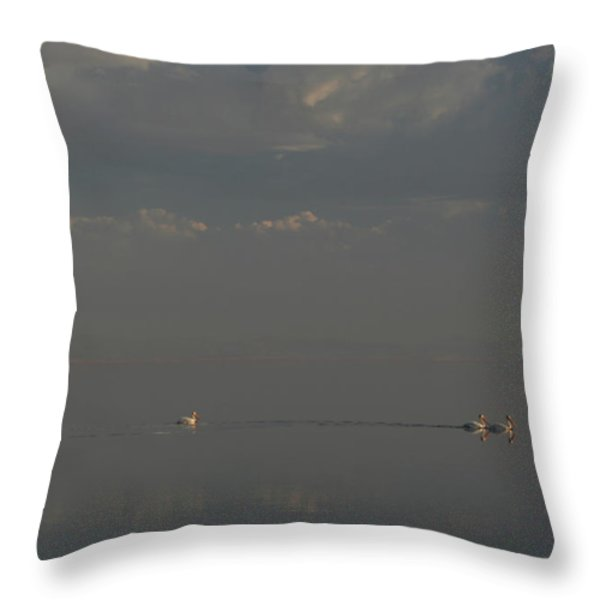 Floating Along Throw Pillow by Laurie Search