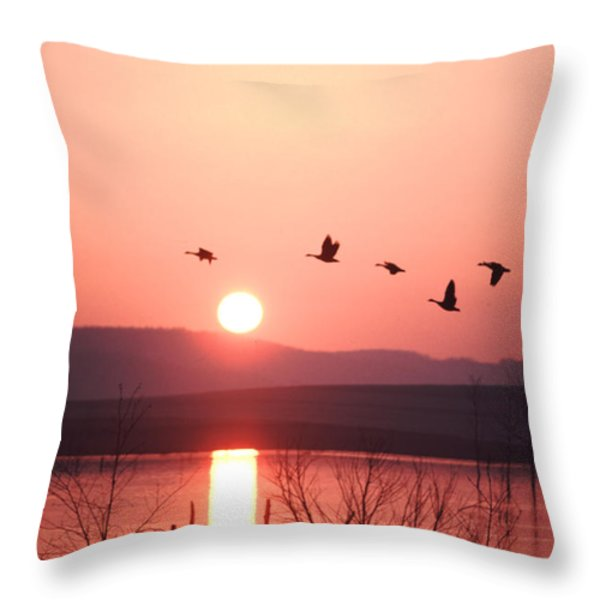Flock Of Canada Geese Flying Throw Pillow by Ira Block