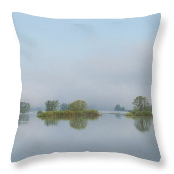 Flooded Meadows In Spring, Unteres Throw Pillow by Norbert Rosing
