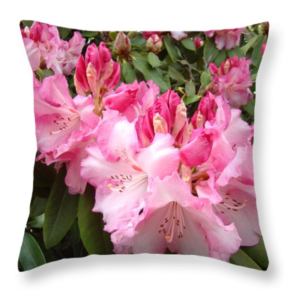 Floral Rhodies Photography Pink Rhododendrons prints Throw Pillow by Baslee Troutman Photography Art Prints