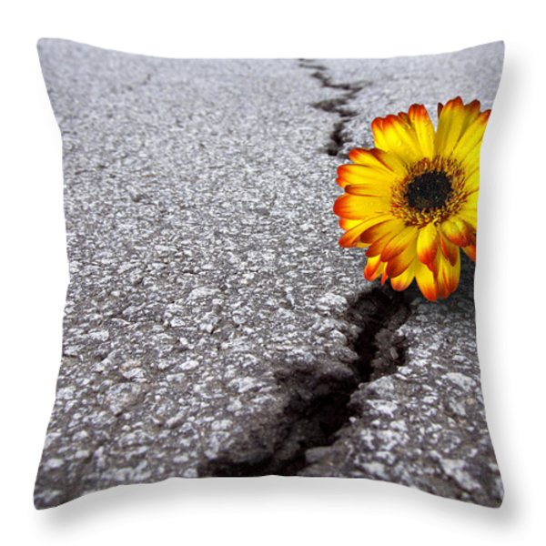 Flower in asphalt Throw Pillow by Carlos Caetano