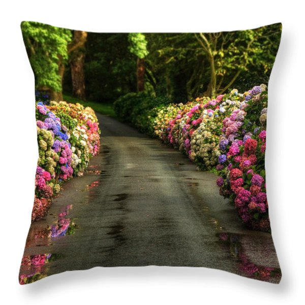 Flower Road Throw Pillow by Svetlana Sewell