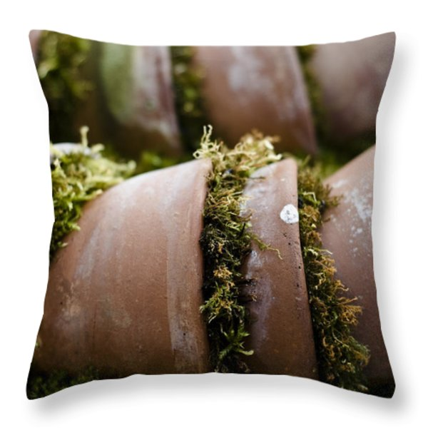 Flowerpots Throw Pillow by Marcio Faustino