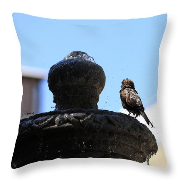 Fluff Dry Throw Pillow by Cheryl Young