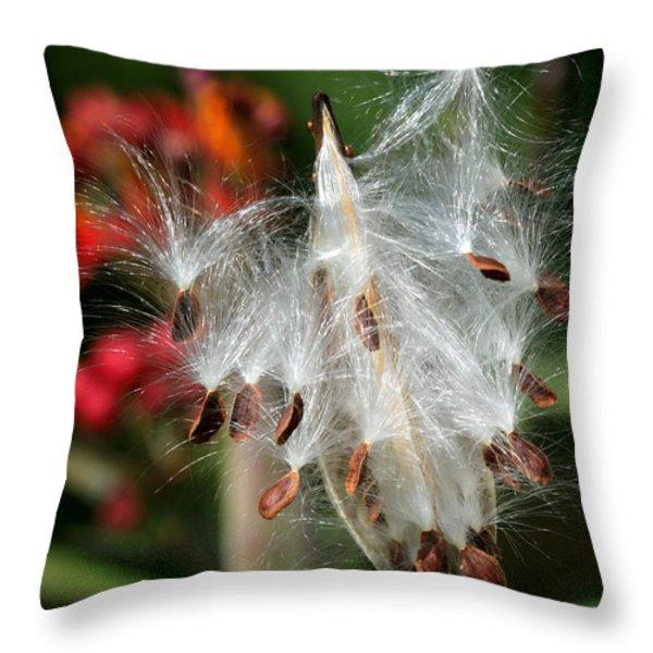 Flying Milkweed Silk Throw Pillow by Sabrina L Ryan