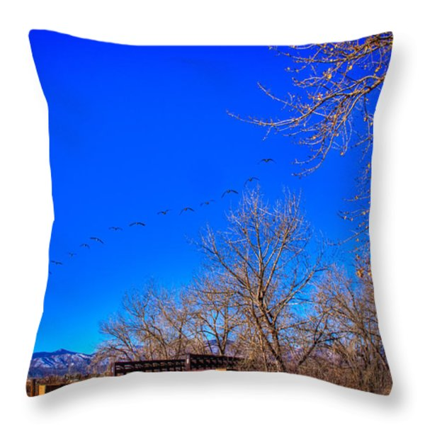 Flying Over South Platte Park Throw Pillow by David Patterson