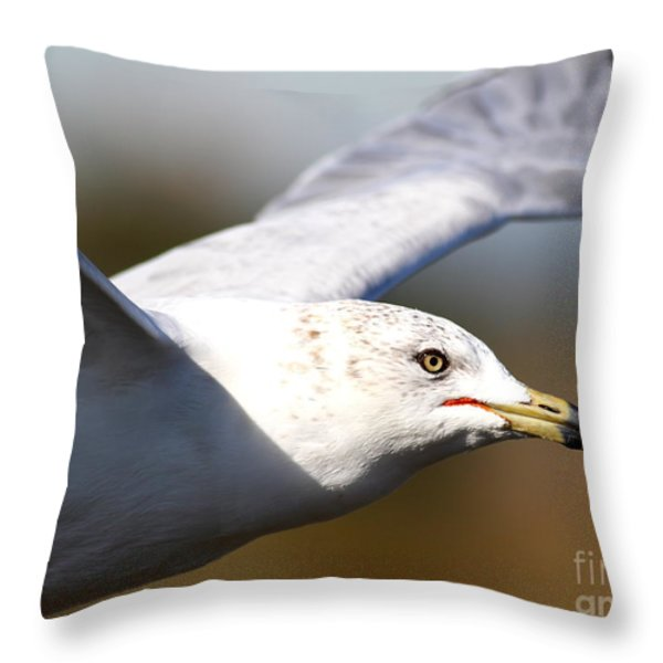 Flying Seagull Closeup Throw Pillow by Wingsdomain Art and Photography