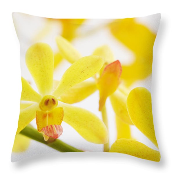focus on Throw Pillow by ATIKETTA SANGASAENG