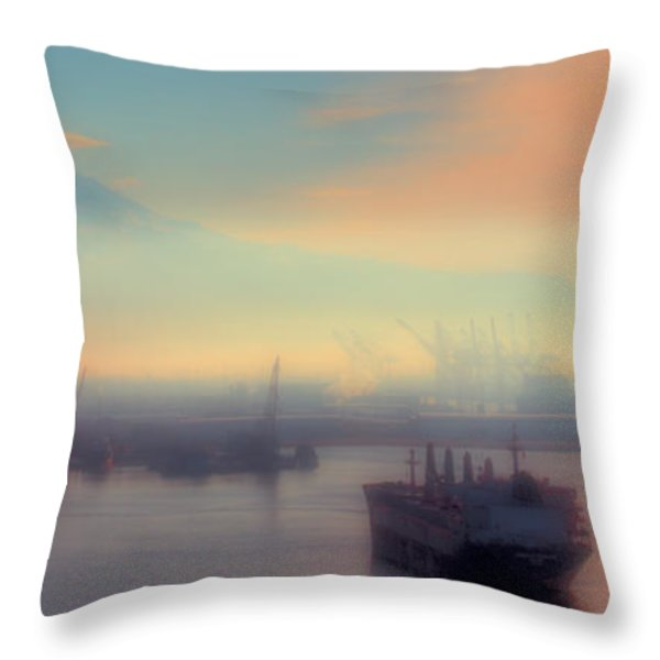 Fog Over The Tide Flats Throw Pillow by David Patterson