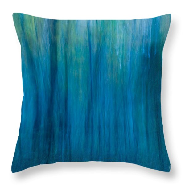Foggy Morning Blues Throw Pillow by Paul W Faust -  Impressions of Light