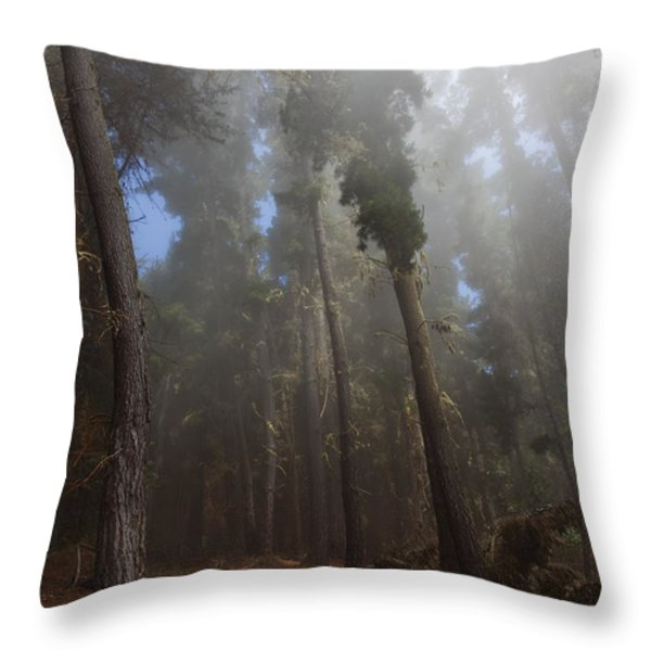 Foggy Poli Poli Throw Pillow by Jenna Szerlag