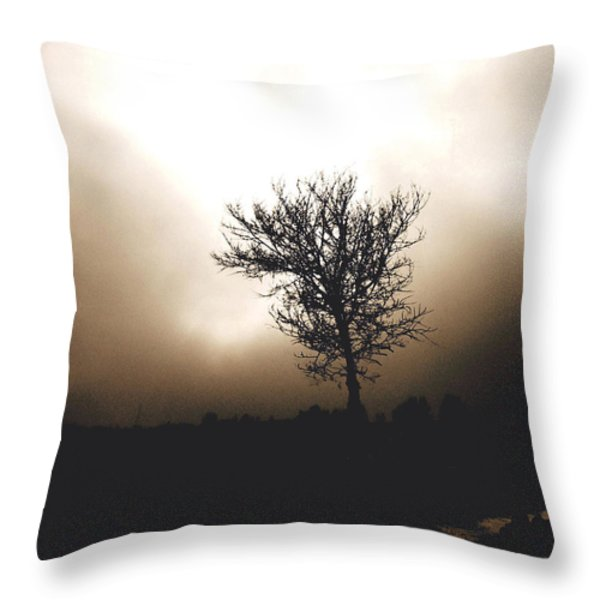 Foggy Winter Morning Throw Pillow by Ann Powell
