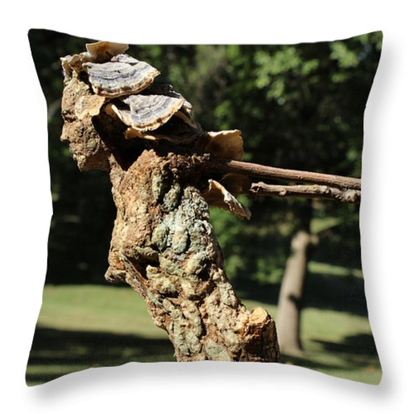 Foliated Victory Among The Trees Throw Pillow by Adam Long