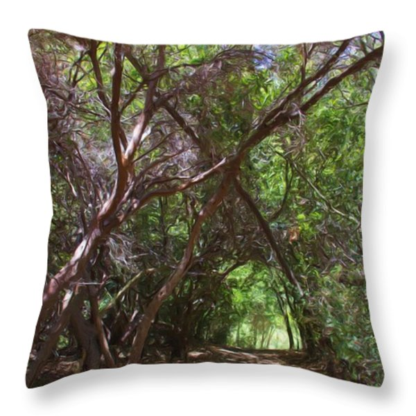 Follow Me Throw Pillow by Heidi Smith