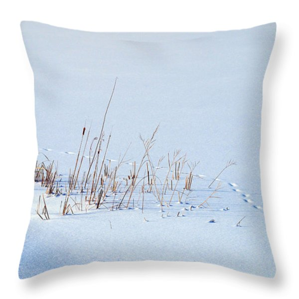 Footprints On Snow Throw Pillow by Paul Ge