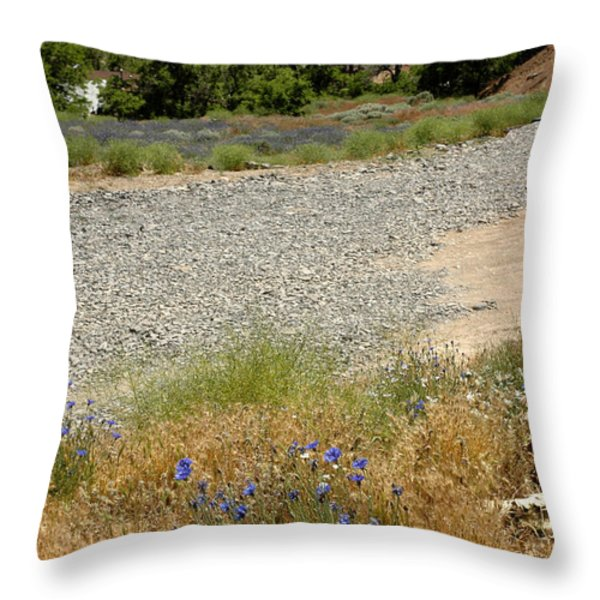 For Purple Mountain Majesties Throw Pillow by LeeAnn McLaneGoetz McLaneGoetzStudioLLCcom