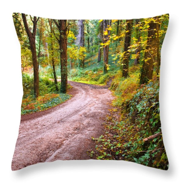 Forest Footpath Throw Pillow by Carlos Caetano