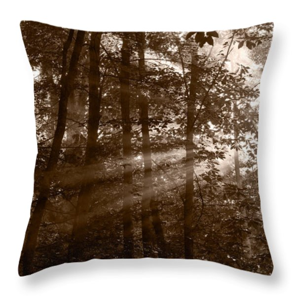 Forest Mist B and W Throw Pillow by Steve Gadomski
