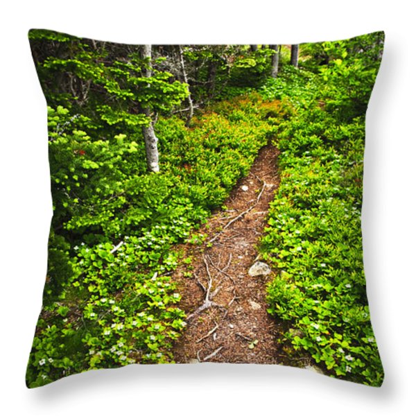 Forest Path In Newfoundland Throw Pillow by Elena Elisseeva