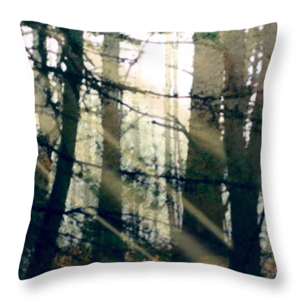Forest Sunrise Throw Pillow by Paul Sachtleben