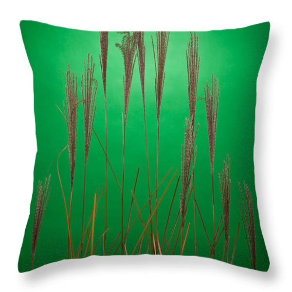 Fountain Grass In Green Throw Pillow by Steve Gadomski