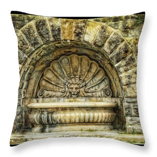 Fountain Throw Pillow by Mauro Celotti