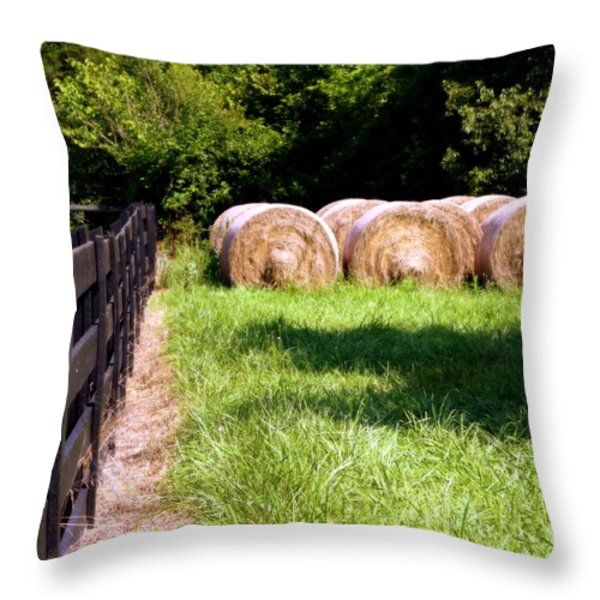 Four Corners Throw Pillow by KAREN WILES