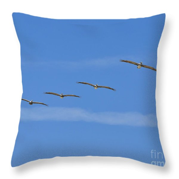 Four Flyers Throw Pillow by Al Powell Photography USA