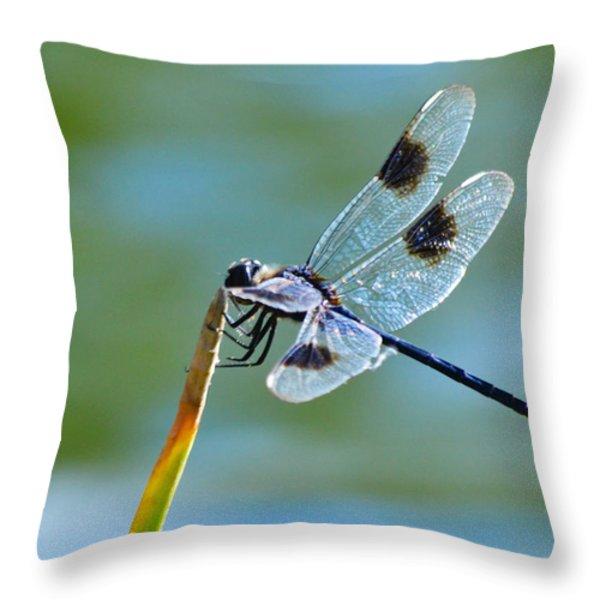 Four Spotted Pennant Throw Pillow by Melanie Moraga