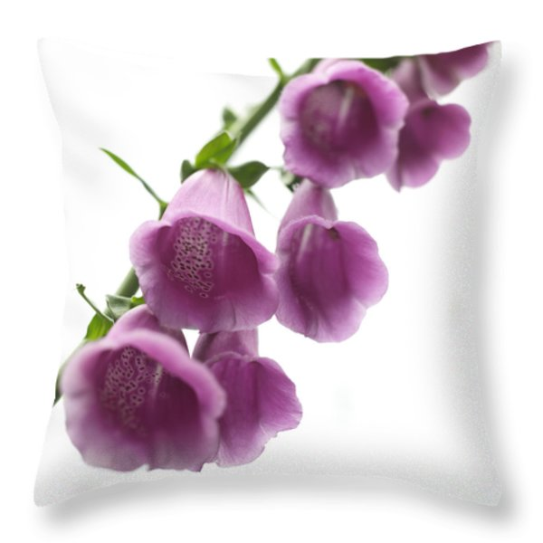 Foxglove Flowers Throw Pillow by Tony Cordoza