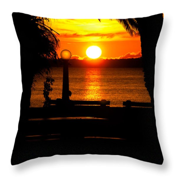 Framed Globes Throw Pillow by Christopher Holmes