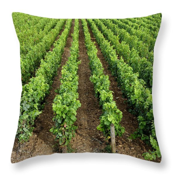 French Vineyard Throw Pillow by Bernard Jaubert