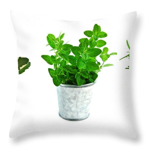 Fresh Herbs Throw Pillow by Elena Elisseeva
