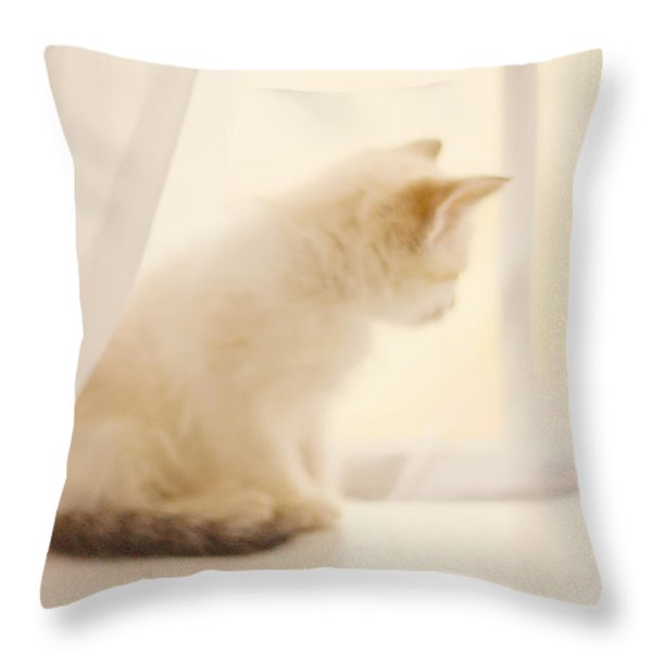 Fresh Wonder Throw Pillow by Amy Tyler