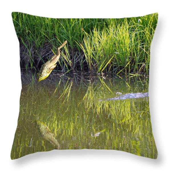 Frog Jumping In Water Throw Pillow by Dan Friend