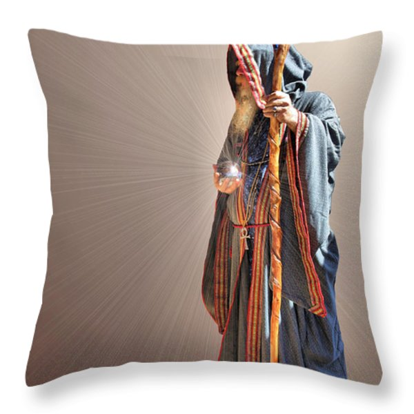 From Within And From Without Throw Pillow by Kristin Elmquist