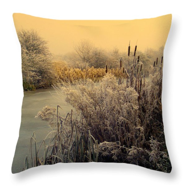 Frost Throw Pillow by Linsey Williams