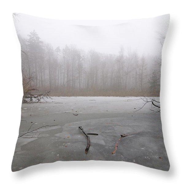 Frozen lake in winter Throw Pillow by Matthias Hauser