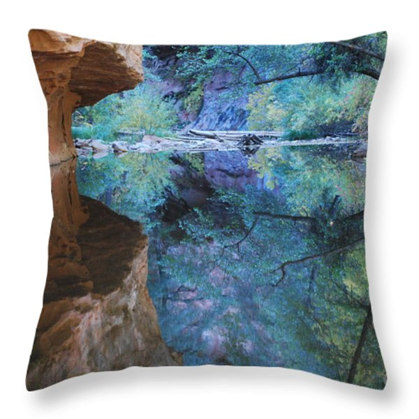 Fully Reflected Throw Pillow by Heather Kirk