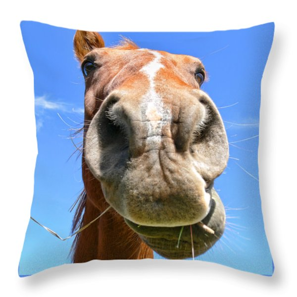 Funny Brown Horse Face Throw Pillow by Jennie Marie Schell