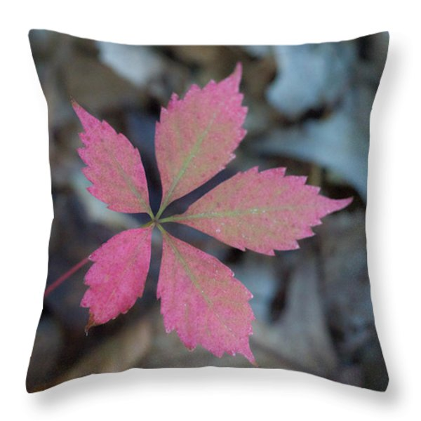 Fushia Leaf 2 Throw Pillow by Douglas Barnett