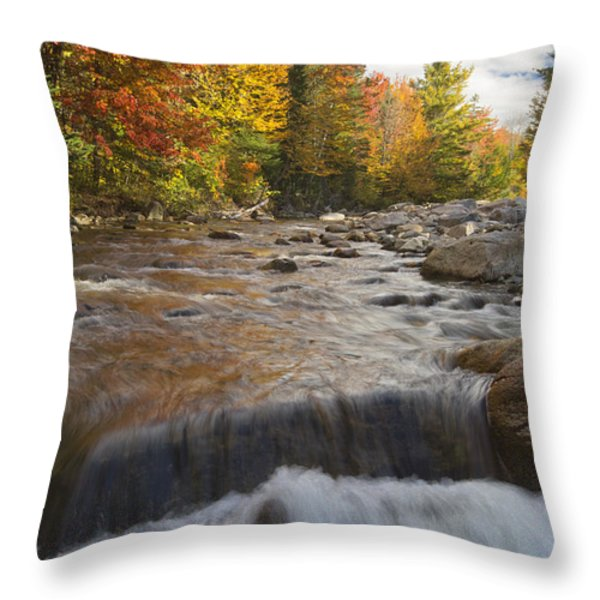 Gale River - White Mountains New Hampshire Throw Pillow by Erin Paul Donovan