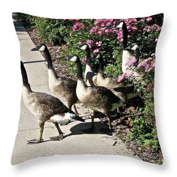 Garden Geese Parade Throw Pillow by Susan Herber