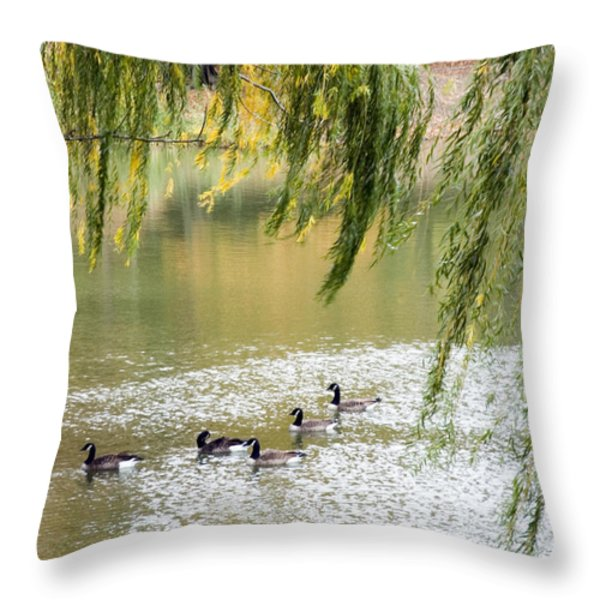 Geese In Central Park Throw Pillow by Stacy Gold