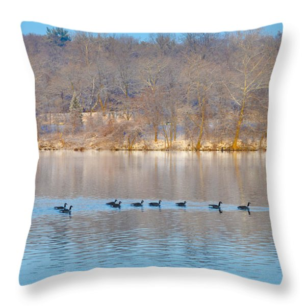 Geese In The Schuylkill River Throw Pillow by Bill Cannon