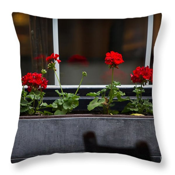 Geranium Flower Box Throw Pillow by Doug Sturgess