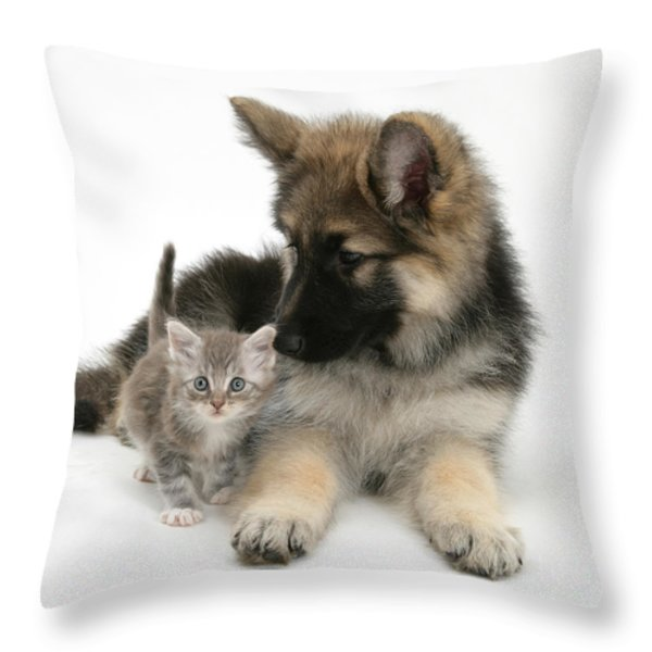 German Shepherd Dog Pup With A Tabby Throw Pillow by Mark Taylor